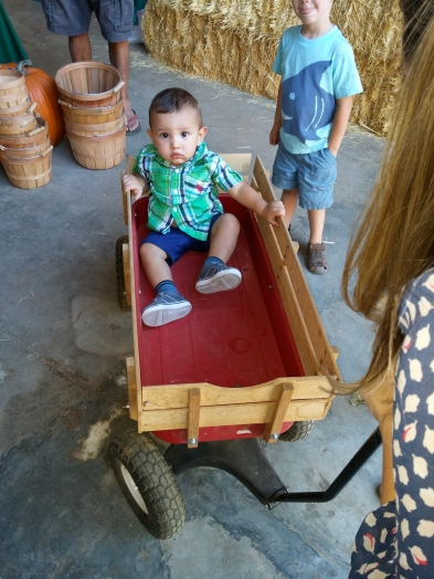 Sadly, Diego did not like this wagon.